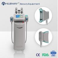 Cryolipolysis Loss Weight Machine/Cryolipolysis Beauty Device Manufactures