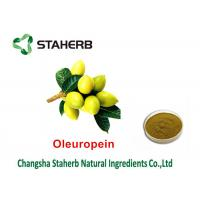 Quality Oleuropein 40% - 80% Natural Green Extracts , Extracting Chemicals From Plants for sale