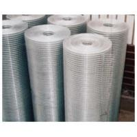 China best sale professional manufacture galvanized welded wire mesh on sale