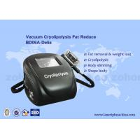 Portable cryolipolysis fat freeze home cryolipolysis liposuction machine Manufactures