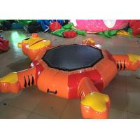 China Durable Inflatable Aquar Park Water Floating Tiger Trampoline Water Air Inflated Toys on sale