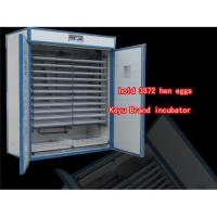 China 800w chickne eggs incubator quail egg incubator on sale