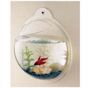 Acrylic Fish Aquarium Manufactures