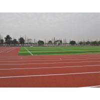 Corrosion Resistance IAAF Approved Track Surfaces Elastic Rubber Crumb For School Manufactures