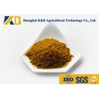 65% High Protein Fish Meal Powder Strong Package Rich Vitamin For Aquaculture