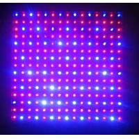 China 120 watt  / 300w / 600w Hydroponic LED Grow Lights high intensity  for Flower Exhibition on sale