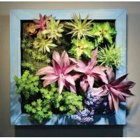 Square Wood Frame Hanging Plastic Succulents Wall Art Artificial Plants Arrangement Paint Manufactures