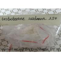 Testosterone Sustanon 250 For Muscle Building , Testosterone Blend Powder Manufactures