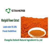 Quality Lutein Ester 5% Marigold Flower Extract Powder Orange - Red Color 2 Years Shelf for sale