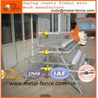 China Battery Cage Chicken Laying Eggs on sale