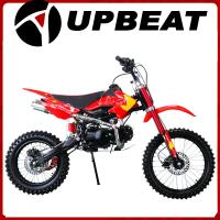 China 125cc pit bike 110cc pit bike on sale