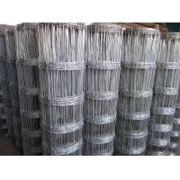 Hot sale High tensil Galvanized deer fencing cattle fence horse fence Manufactures