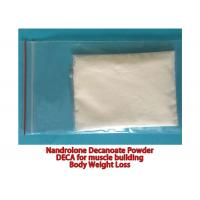 Pharmaceutical Nandrolone Decanoate Steroid CAS 360-70-3 No Side Effect Deca Powder Manufactures