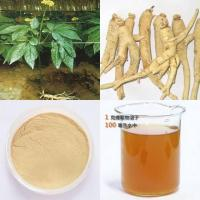Panax Ginseng Root Extract 27-30% Manufactures