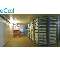 -25℃ ~ -18℃ ELT19 Frozen Food Storage Warehouses 6000Tons Industrial Refrigeration Manufactures