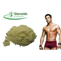 Weight Loss Anabolic Steroid Hormones Yellow Powder 2 , 4-Dinitrophenol / DNP CAS 51-28-5 Manufactures