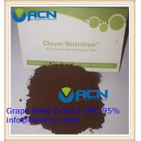 China ACNS00199 Grape Seed Extract OPC 95%/Polyphenols 85% | A Clover Nutrition Inc | grape skin extract on sale