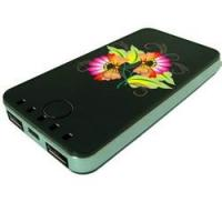 Multi-Function Powerbank for iPhone, iPad, Mobile Phone, Digital Products (PW940) Manufactures