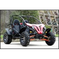 250cc Go Kart Dune Buggy Racing Kart For Adult With 2 Big Head Lights Manufactures