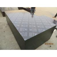 KINGPLUS FILM FACED PLYWOOD,construction formply / concrete formplywood / formwork panel Manufactures