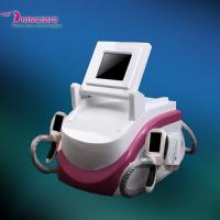 2 handles Cryolipolysis Weight Loss Machine Manufactures