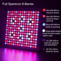 Quality Waterproof Full Spectrum LED Grow Lights With 660nm - 450nm Wavelengh for sale