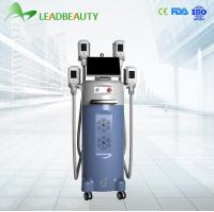 China cryolipolysis slimming machine Price on sale