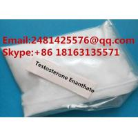China Safe Anabolic Steroids Testosterone Enanthate Test Enanthate Powder CAS 315-37-7 on sale