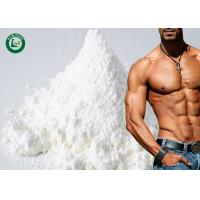 Buy cheap Injectable Build Muscle Steroids Testosterone Sust 250 Raw Powder from wholesalers