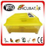 48 Eggs Home use Full Automatic Mini Incubator for Hatching Eggs (VA-48) Manufactures