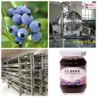 Blueberry Beverage Production Equipment SS304 Material Easy Operation Manufactures