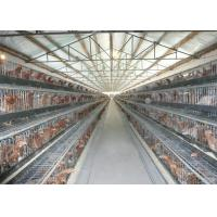 China Collecting Egg Livestock Farming Equipment Automatic Poultry Farm Equipment on sale
