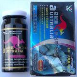 Australia Kangaroo Essence Sex Enhancement Pills / Sexual Medicine For Penis Enlargement Manufactures