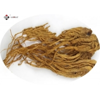 Cosmetic raw materials 1% Ligustilide  Angelica  Root Extract powder Manufactures