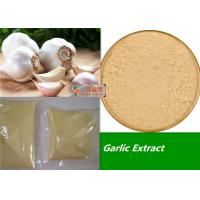 80 - 100 Mesh Organic Garlic Powder / Allicin Powder Extract Anti Fatigue Manufactures