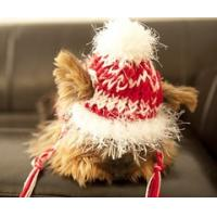 Quality Cool Fashion Knitted Pet Hat for sale