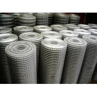 China Hot Dipped Galvanized Welded Wire Mesh Fencing Rolls 2X2 4X4 5X5cm Firm Structure on sale