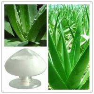 China Aloe vera whole leaf freeze dried powder, Aloe vera gel freeze dried powder on sale