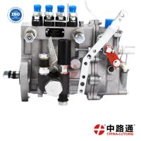 China distributor rotary fuel injection pump 4951495 /4061206 high pressure pump replacement for NTA855 shantui SD 32 on sale