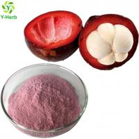 China 100% pure organic concentrate mangosteen fruit powder/mangosteen juice powder on sale