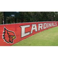 Advertising Pvc Flex Banner Printing , Coated Custom Mesh Banners Manufactures