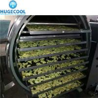 Automatic Control Vacuum Freeze Drying Machine , Freeze Dried Food Dryer Manufactures
