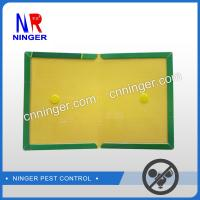 China Paper Board Rat and  Mouse Glue Traps Strong Adhesive on sale