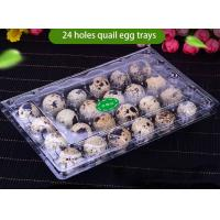 China Transparent Recyclable Disposable Plastic Quail Egg Tray 4x6 Range on sale