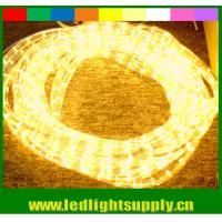 China 110V/220v yellow 2 wire led christmas rope lights decoration lights on sale