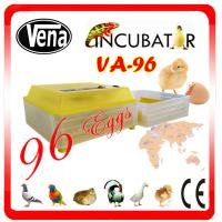 China Full automatic poultry incubator/chicken egg incubation sale/egg hatching machine on sale