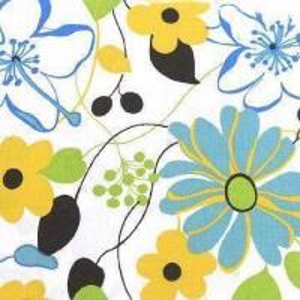 Poplin Fabric with Print