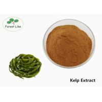 China Brown Kelp Extract Powder Fucoxanthin Powder With Solvent Extraction on sale