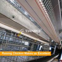Tianrui Design H Type 8 Tiers Automatic Battery Cage for Poultry