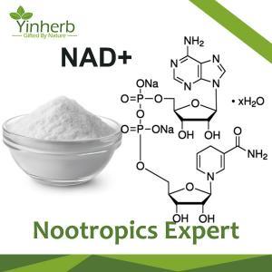β-Nicotinamide Adenine Dinucleotide(NAD+) Manufactures
